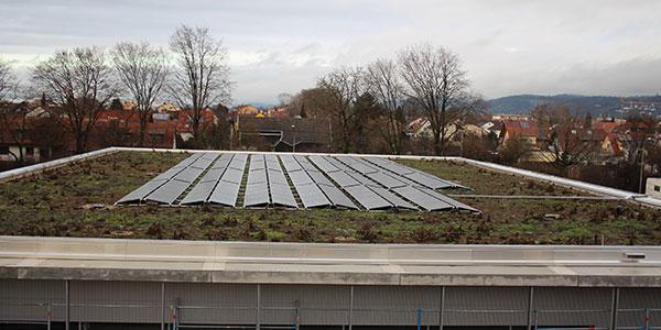Sonnenstrom macht in Weinheim Schule